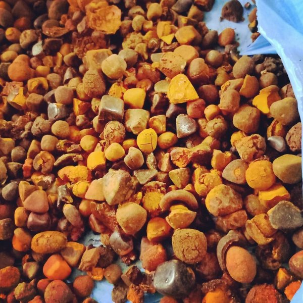 Quality Cow Gallstones available